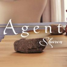 agent-s